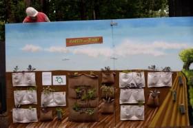 Stadtnutz(t)pflanzen- Wo Stadt wächst soll auch Grün wachsen!